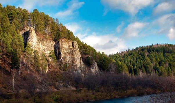 Россия тайга / леса умеренного пояса   ландшафты «--»