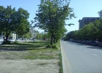place